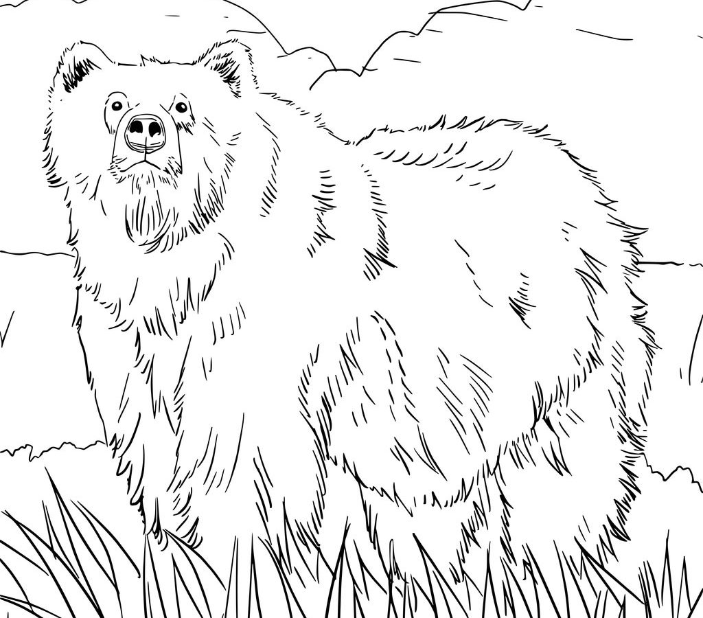 1024x900 Alaska Coloring Pages For Kids Wildlife State Symbols High Quality