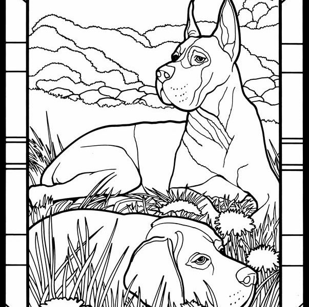 603x600 Great Coloring Pages Coloring Page