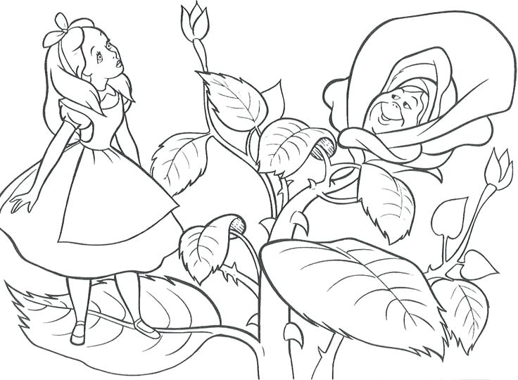 736x540 Alice In Wonderland Coloring Pages In Wonderland Coloring Pages