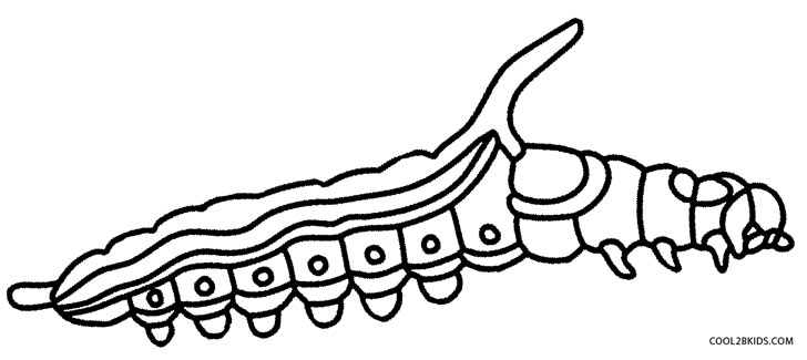 728x325 Printable Caterpillar Coloring Pages For Kids