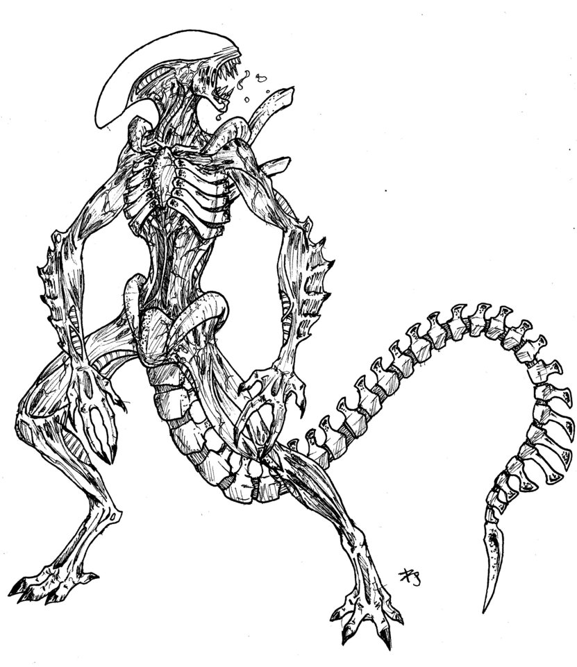 831x961 Alien Vs Predator Coloring Pages