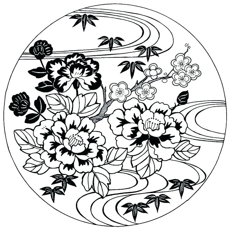 736x737 Cherry Coloring Pages Almond Blossom Of Apple Blossoms Cherry