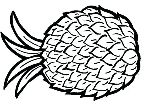 500x354 Coloring Pages Flowers Spring Pineapple Aloha Theme Beach Free