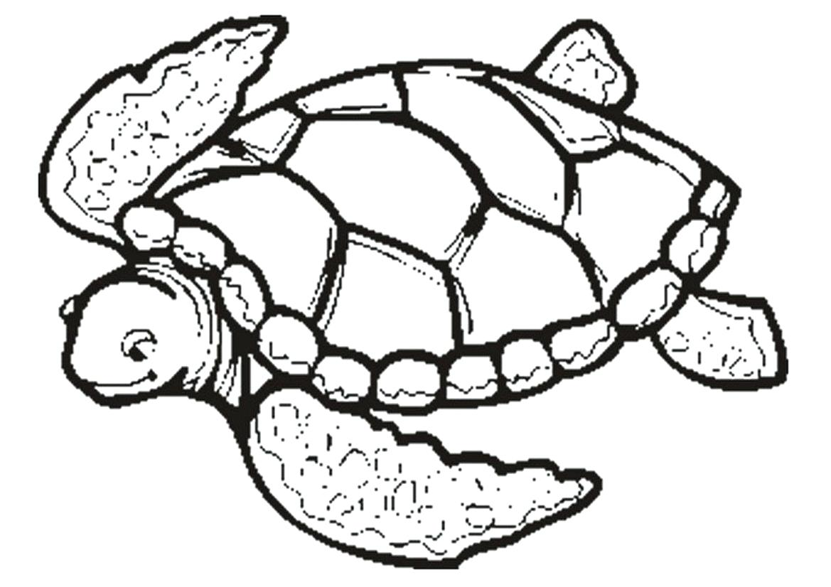 1169x826 Aloha Is Hawaiian Greet Coloring Page Pages For Kids Pdf State
