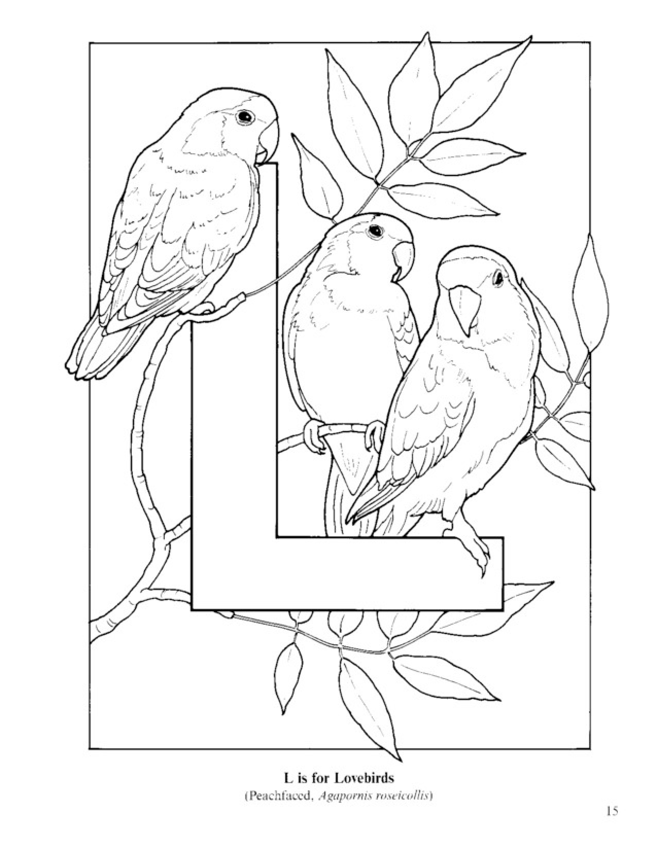 1276x1650 Bird Alphabet Coloring Pages Coloring Pages For Kids