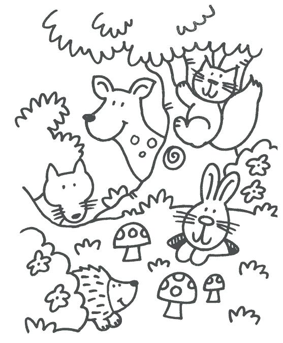 557x674 Forest Animals Coloring Pages Some Coloring Pages In The Theme