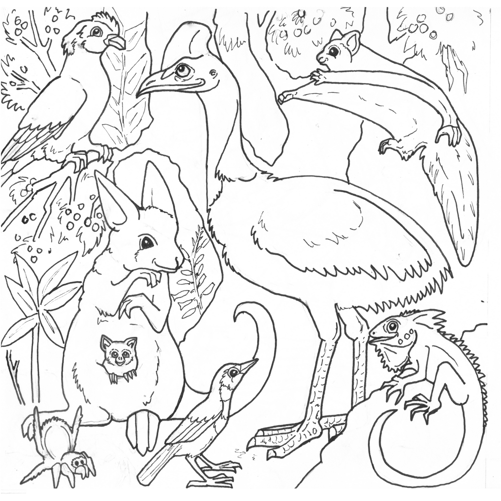 1600x1600 Jungle Animals Coloring Pages At Of Rainforest