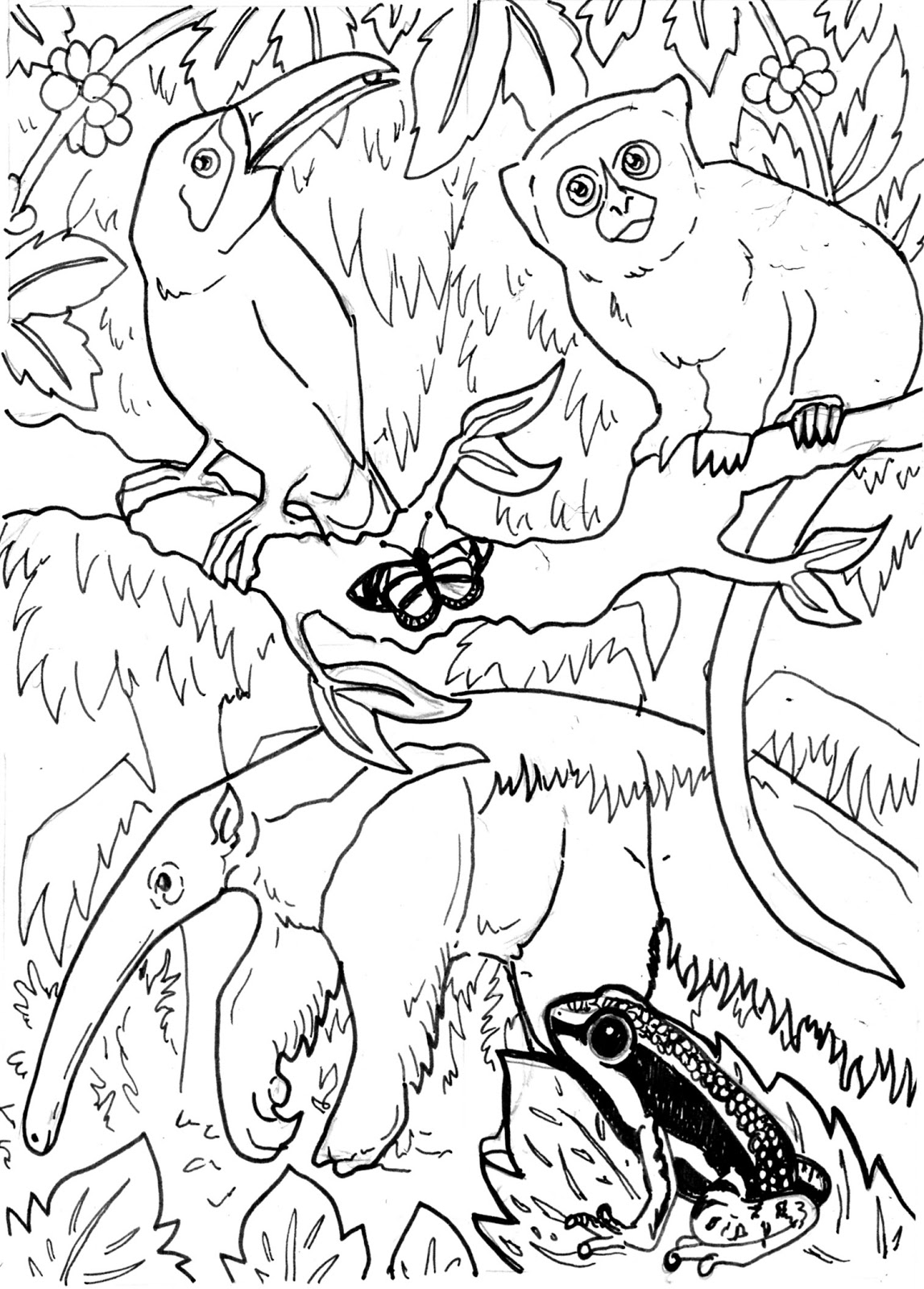 1147x1600 Stylist Inspiration Amazon Rainforest Coloring Pages Animals
