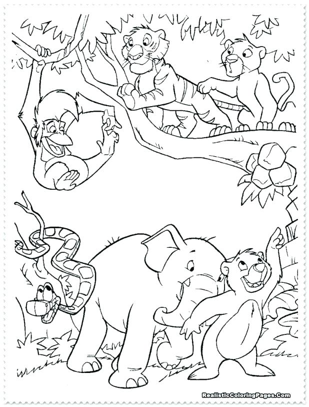 618x813 Amazon Rainforest Coloring Pages Amazon Coloring Pages Coloring
