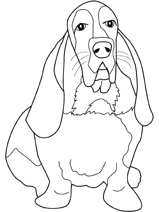 540x720 Amelia Earhart Coloring Page Coloring Page Basset Hound Coloring
