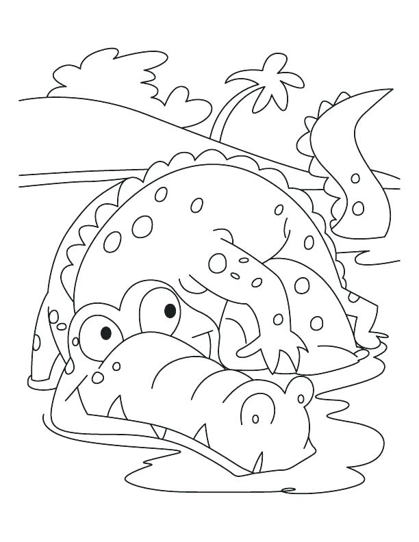 612x792 Alligator Coloring Page American Alligator Coloring Page