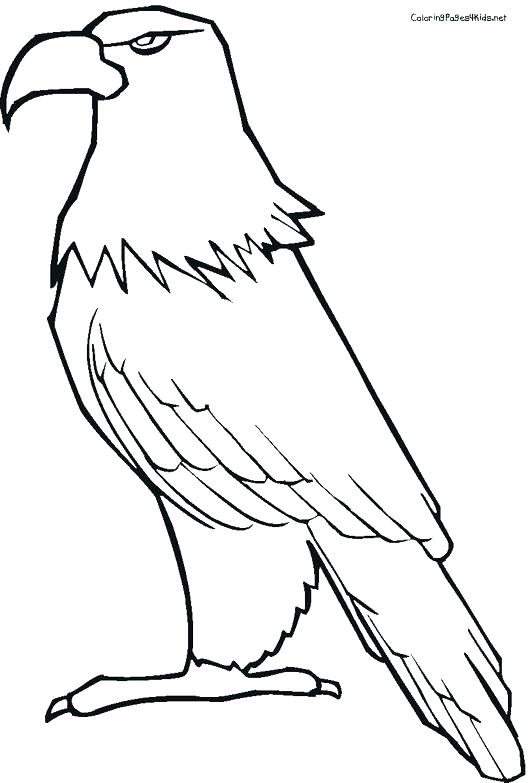 530x783 Eagle Color Page Bald Eagle With Smooth Feather Coloring Page Cute