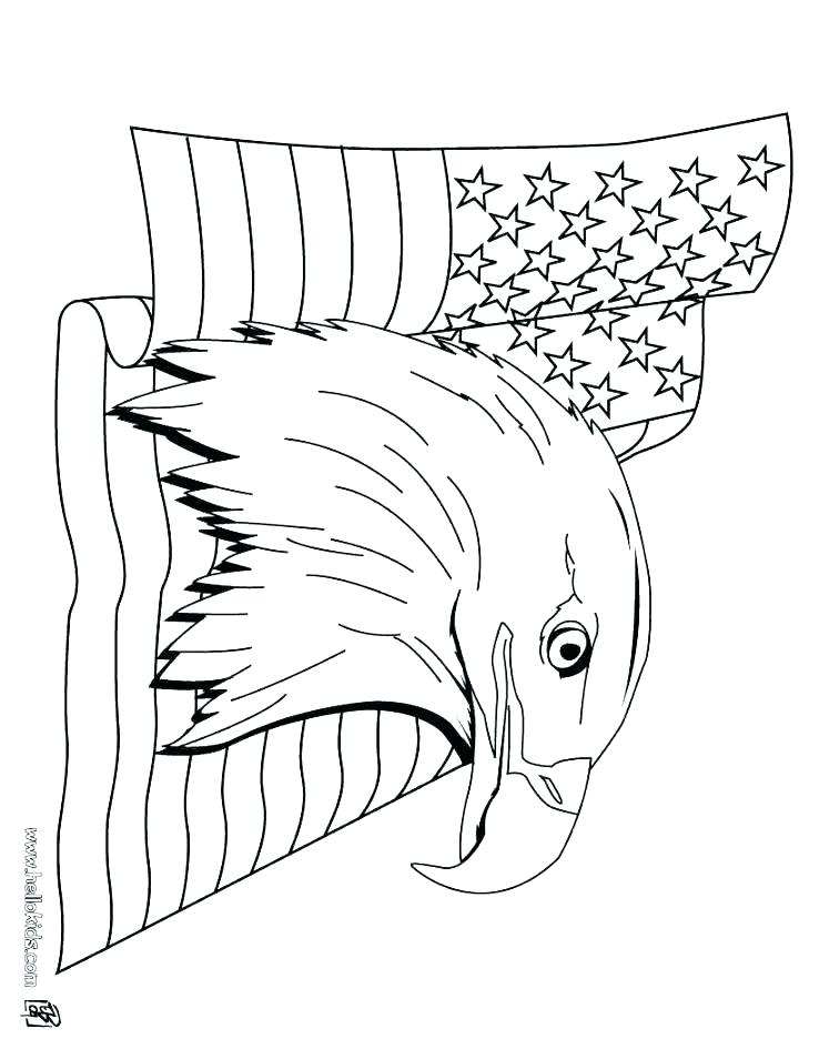 738x954 Eagle Color Page Head Coloring Page Eagle Color Sheet Bald Eagle