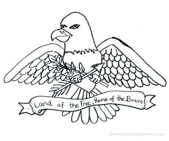 554x462 American Bald Eagle Coloring Sheet Coloring Pages