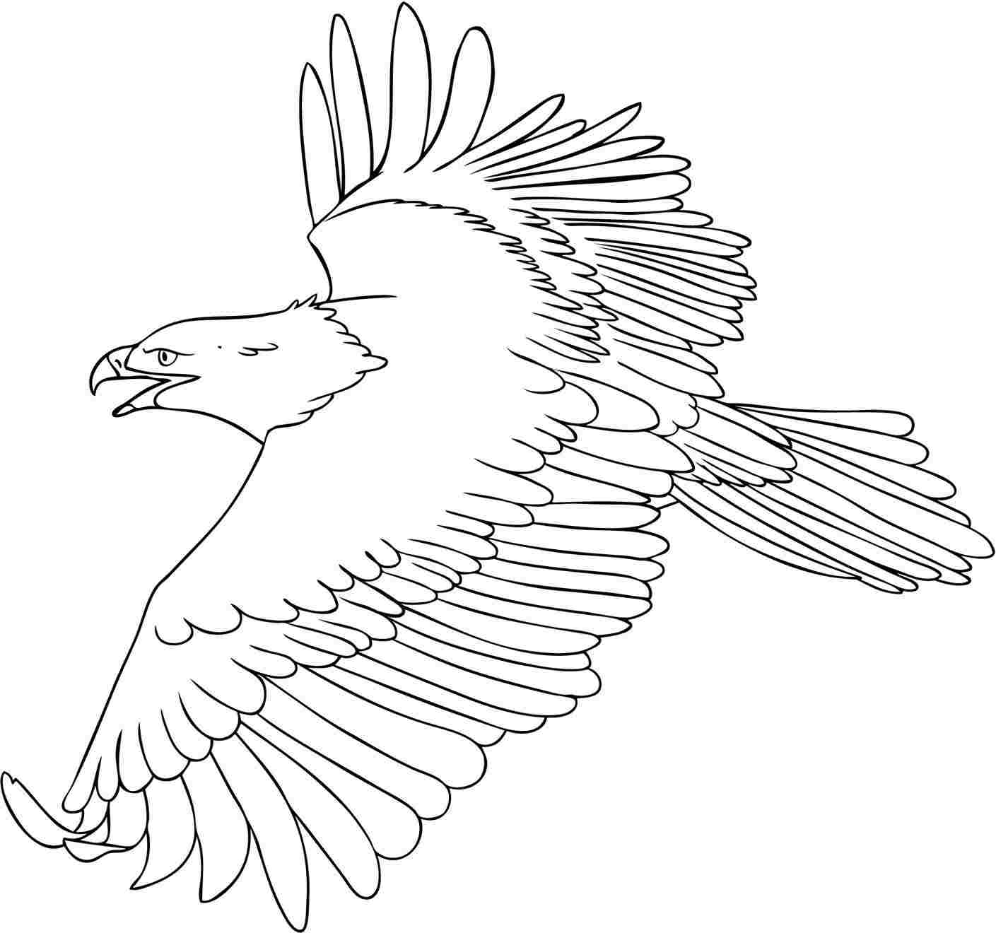 1409x1320 Eagle Coloring Pages Perched Golden Pictures Animal Baby American