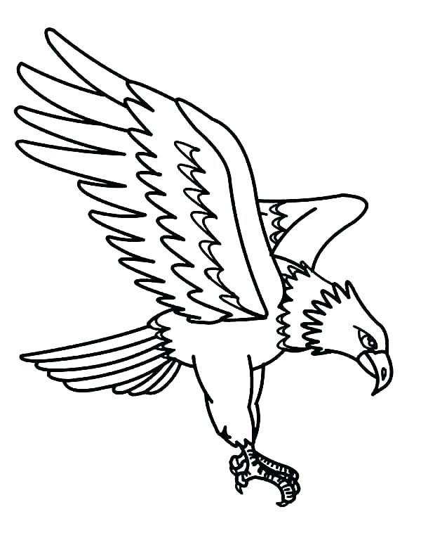 600x775 Bald Eagle Coloring Pictures