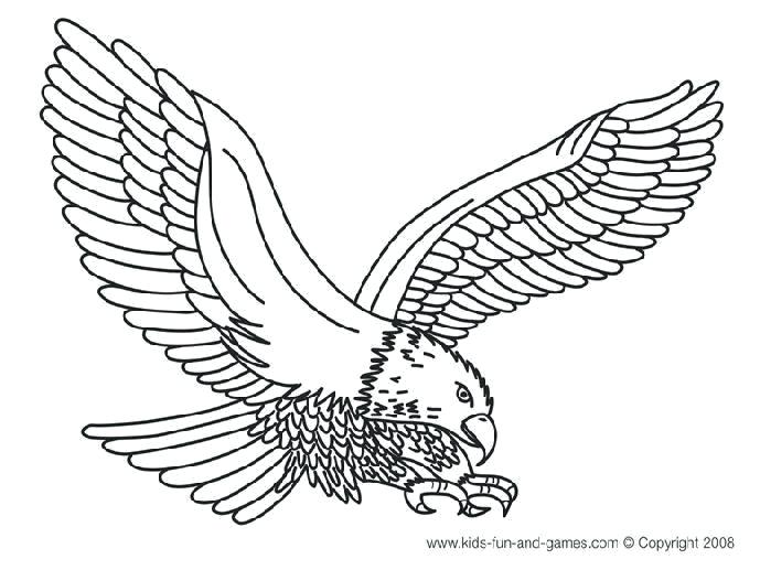 The best free Bald eagle coloring page images. Download from ...