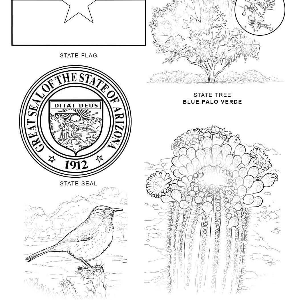 1020x1050 State Symbols Coloring Pages