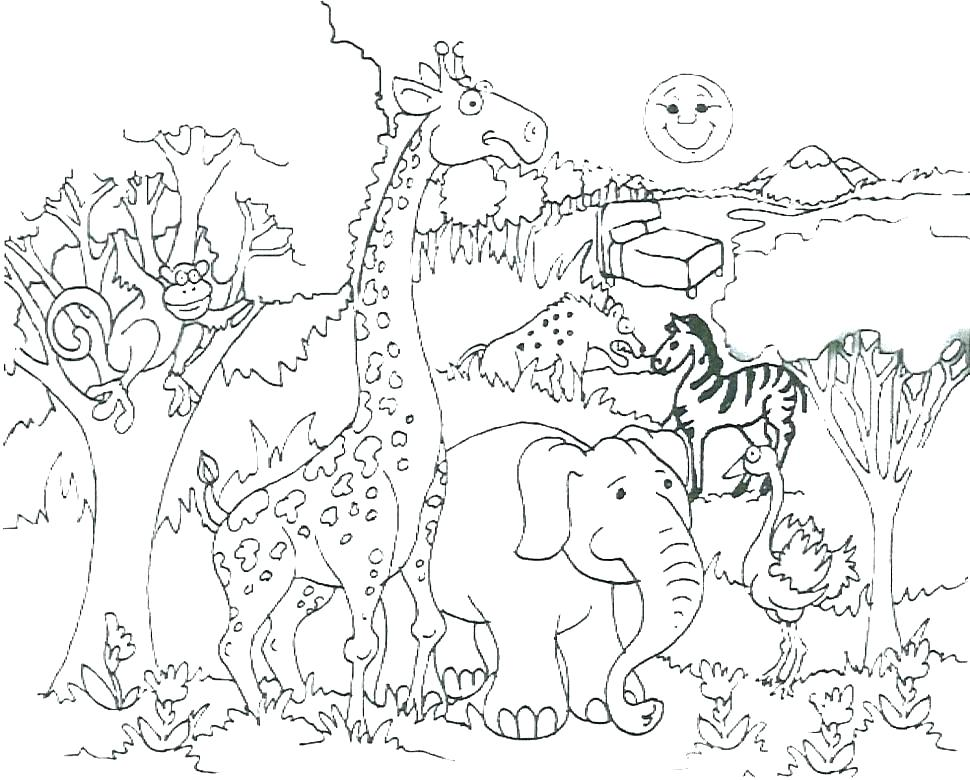 970x780 Leopard Coloring Pages Baby Leopard Coloring Pages Jungle Animals