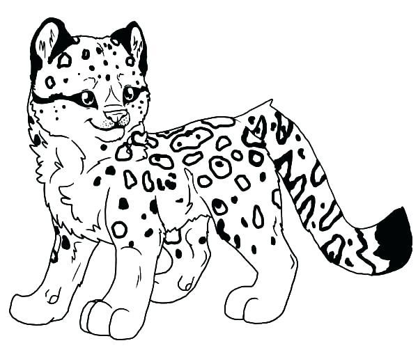 600x503 Leopard Coloring Pages Defeat The Leopard Coloring Page Leopard