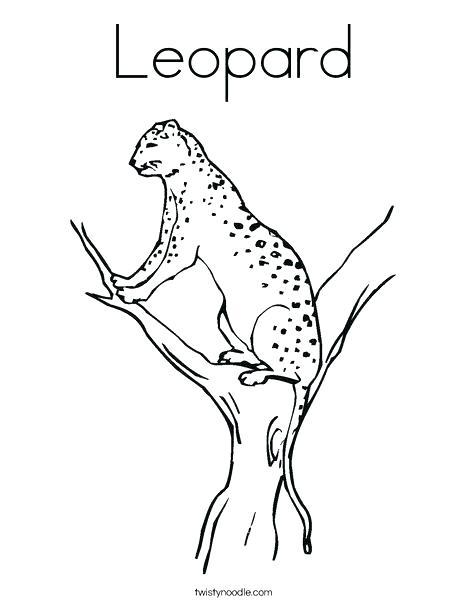468x605 Amur Leopard Coloring Pages Leopard Coloring Page Lurking Leopard