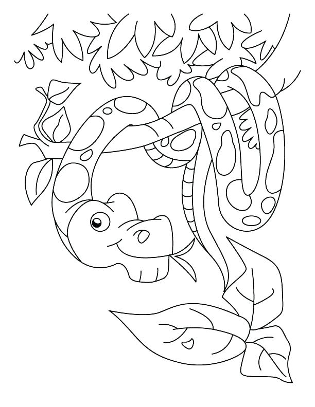 612x792 Colouring Pictures Of Snakes Snakes G Pages Of Page Anaconda Snake
