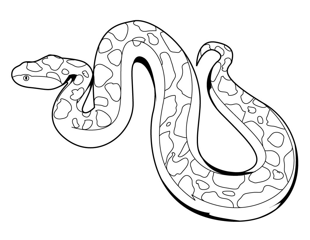 1060x820 Creative Ideas Snake Coloring Pages Printable Realistic For Adults