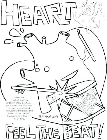 368x480 Heart Anatomy Coloring Pages Heart Anatomy Coloring Pages Sheet