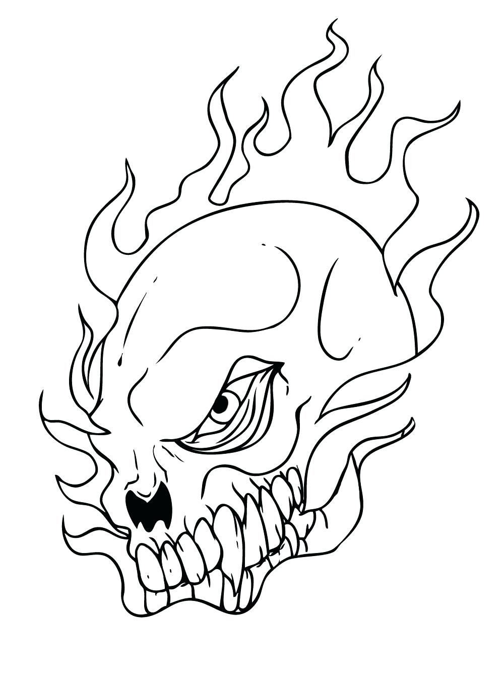 1000x1356 Coloring Page Anatomy And Physiology Coloring Pages Free Skull