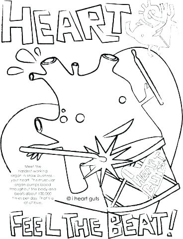 368x480 Heart Anatomy Coloring Pages Heart Coloring Book Heart Anatomy