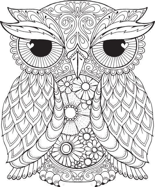 535x645 Adult Coloring Pages