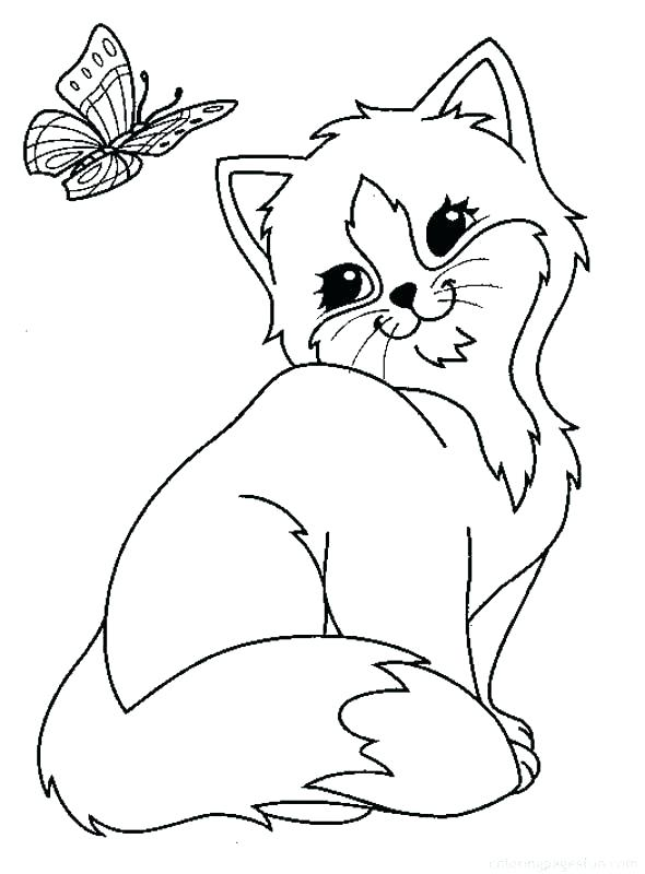 590x800 Puppy And Kitty Coloring Pages Printable Kitten Coloring Pages