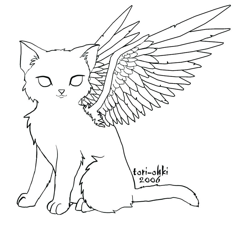 800x800 Angel Wings Coloring Pages Angel Wings Coloring Pages Cat