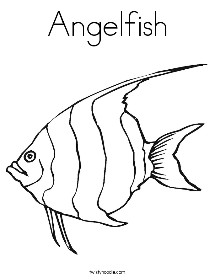 685x886 Angelfish Coloring Page