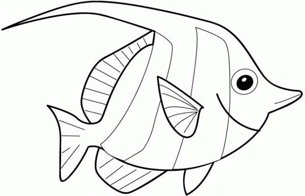 600x387 Angelfish Coloring Pages