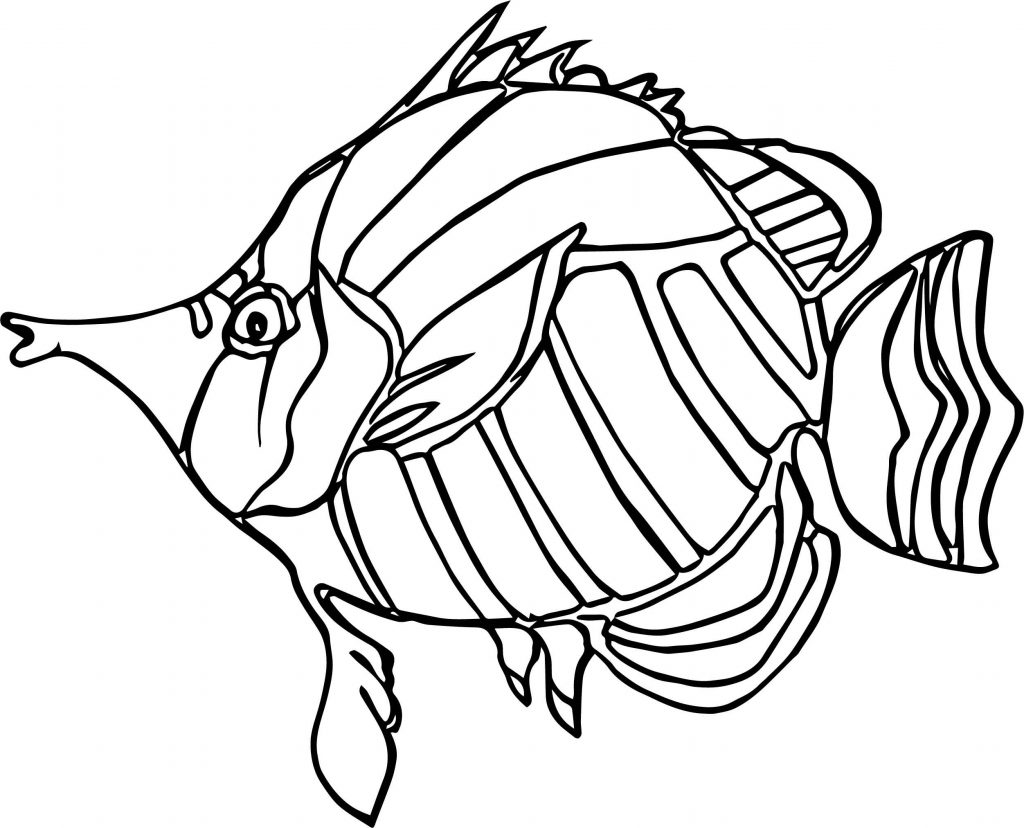 1024x828 Angel Fish Coloring Page Deeptown Club