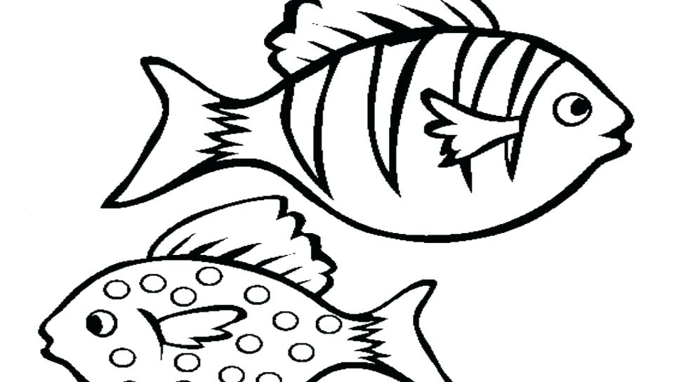 960x544 Goldfish Coloring Pages Bass Fish Coloring Pages Angel Fish