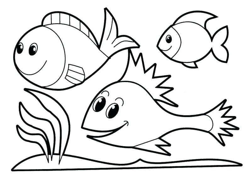 785x598 Angel Fish Coloring Page
