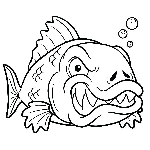 600x600 Angel Fish Coloring Page