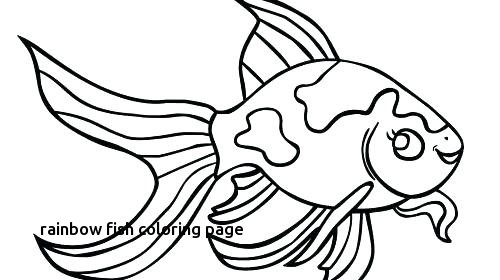 500x280 Angel Fish Coloring Page Coloring Page A Rainbow Rainbow Fish
