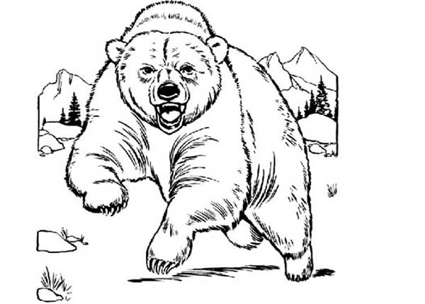 600x429 Bear Is Angry Coloring Page