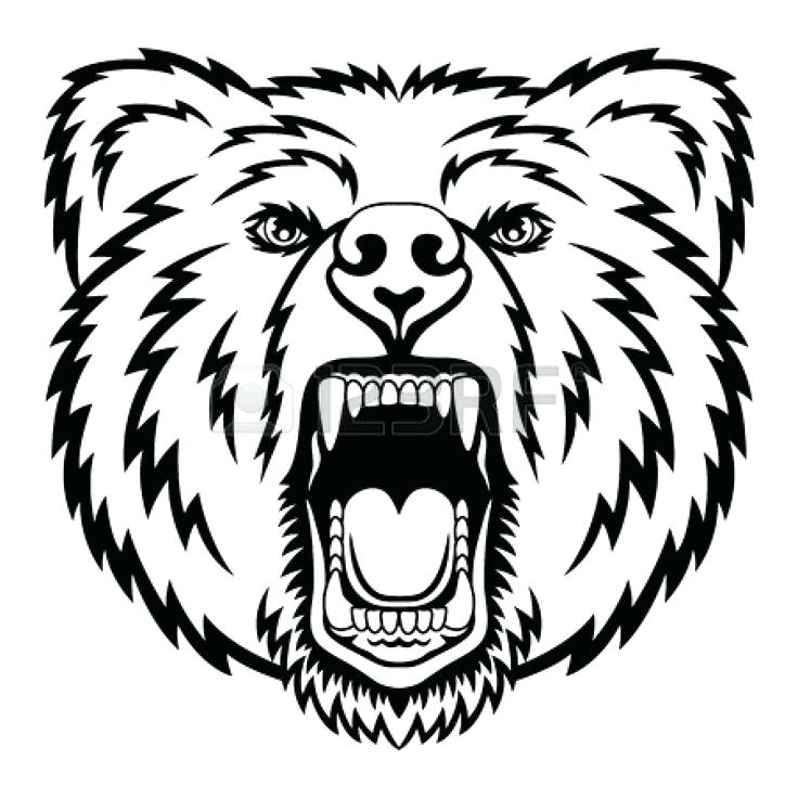 736x736 Grizzly Bear Coloring Pages Drawn Grizzly Bear Mad Bear Free