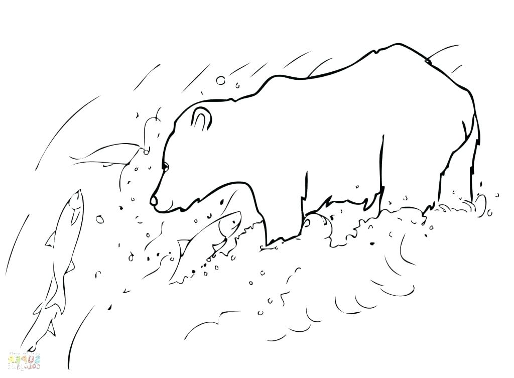 1024x753 Grizzly Bear Coloring Pages Grizzly Bear Coloring Page Grizzly