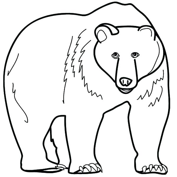 600x601 Grizzly Bear Pictures To Color Angry Grizzly Bear Coloring Pages