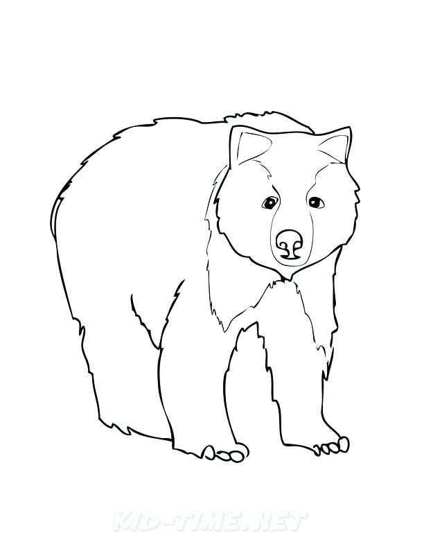 612x792 Grizzly Bear Coloring Page