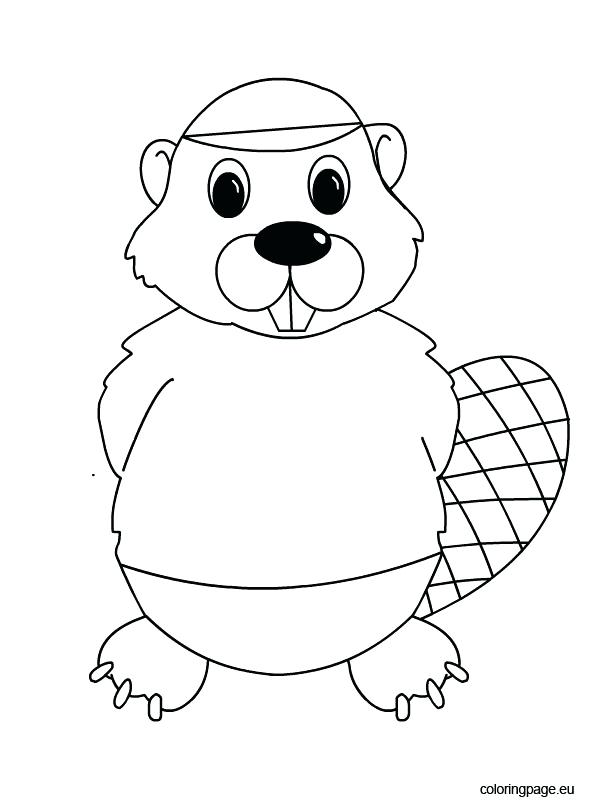 595x804 Beaver Coloring Page Printable Beaver Coloring Page Medecine Du