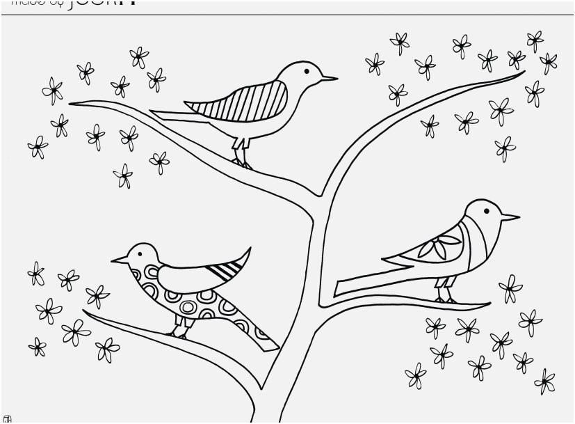 827x609 Printable Bird Coloring Pages Collection Angry Birds Coloring