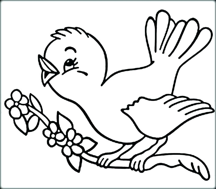 878x768 Blue Angry Bird Coloring Page
