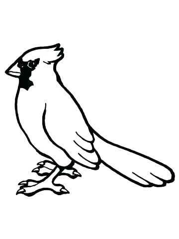 360x480 Birds Coloring Pages For Kids Angry Birds Coloring Pages Red Bird