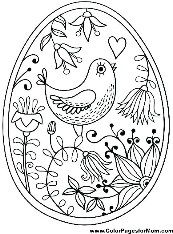 562x760 Angry Birds Printable Coloring Pages Birds Coloring Pages Bird